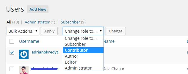 manage users role in wordpress