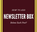 add newsletter box below each post