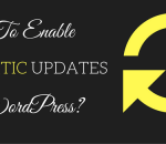 enable automatic updates in wordpress