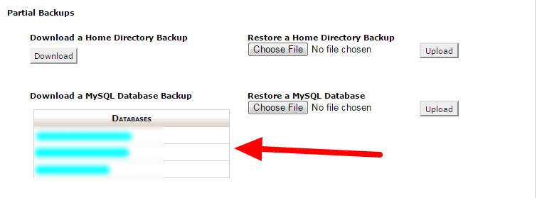 backup your database manually