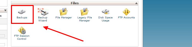 download database backup