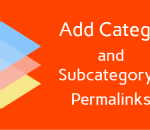 Add category and subcategory in WordPress permalink structures