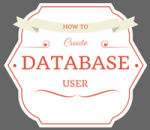 add a new user in the wordpress database