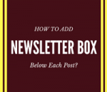 add newsletter box below each post