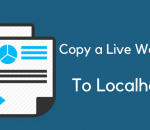 copy a live wordpress site to localhost