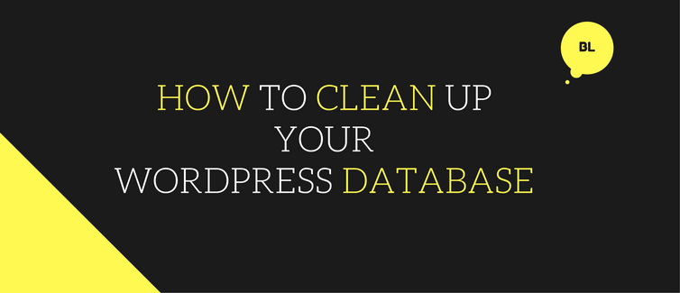 clean up your wordpress database