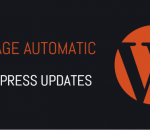 Manage automatic WordPress updates properly