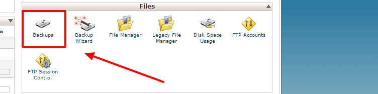 download database backup